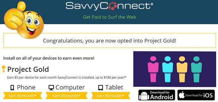 SavvyConnect și sondaje online gratuite