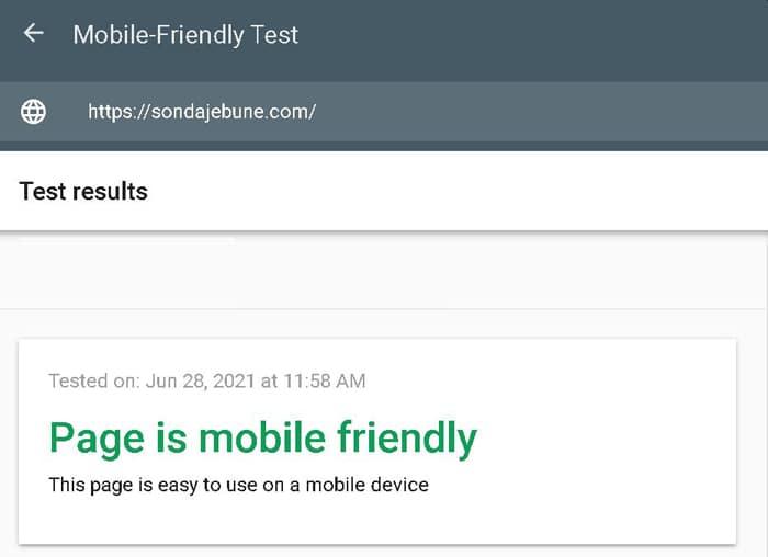 Mobile Friendly SEO verificare